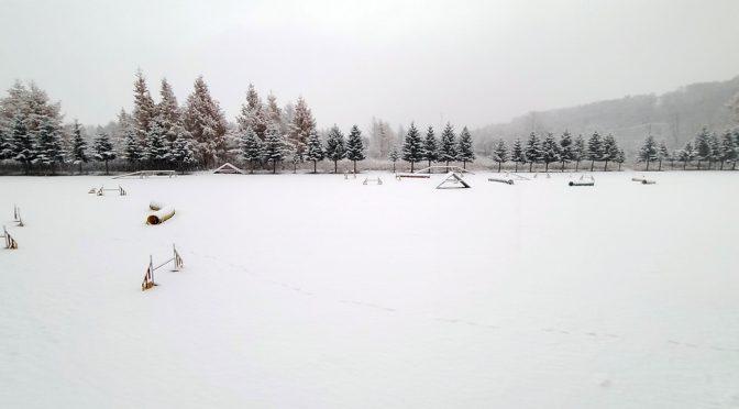 氷の次は雪!